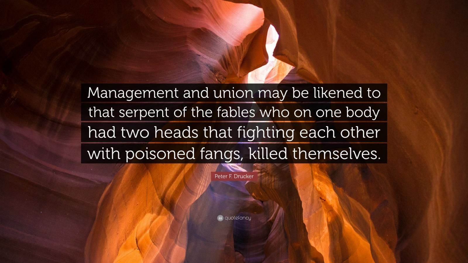 "Peter F. Drucker Quote: ""Management and union may be likened to that serpent of the fables who on one body had two heads that fighting each other with poisoned fangs, killed themselves."""