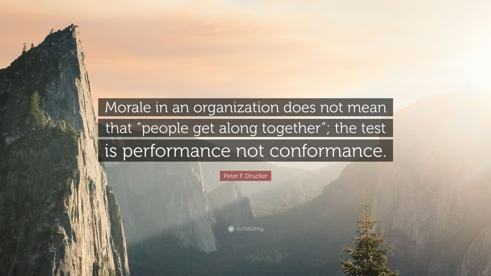 """Peter F. Drucker Quote: """"Morale in an organization does not mean that """"people get along together""""; the test is performance not conformance."""""""