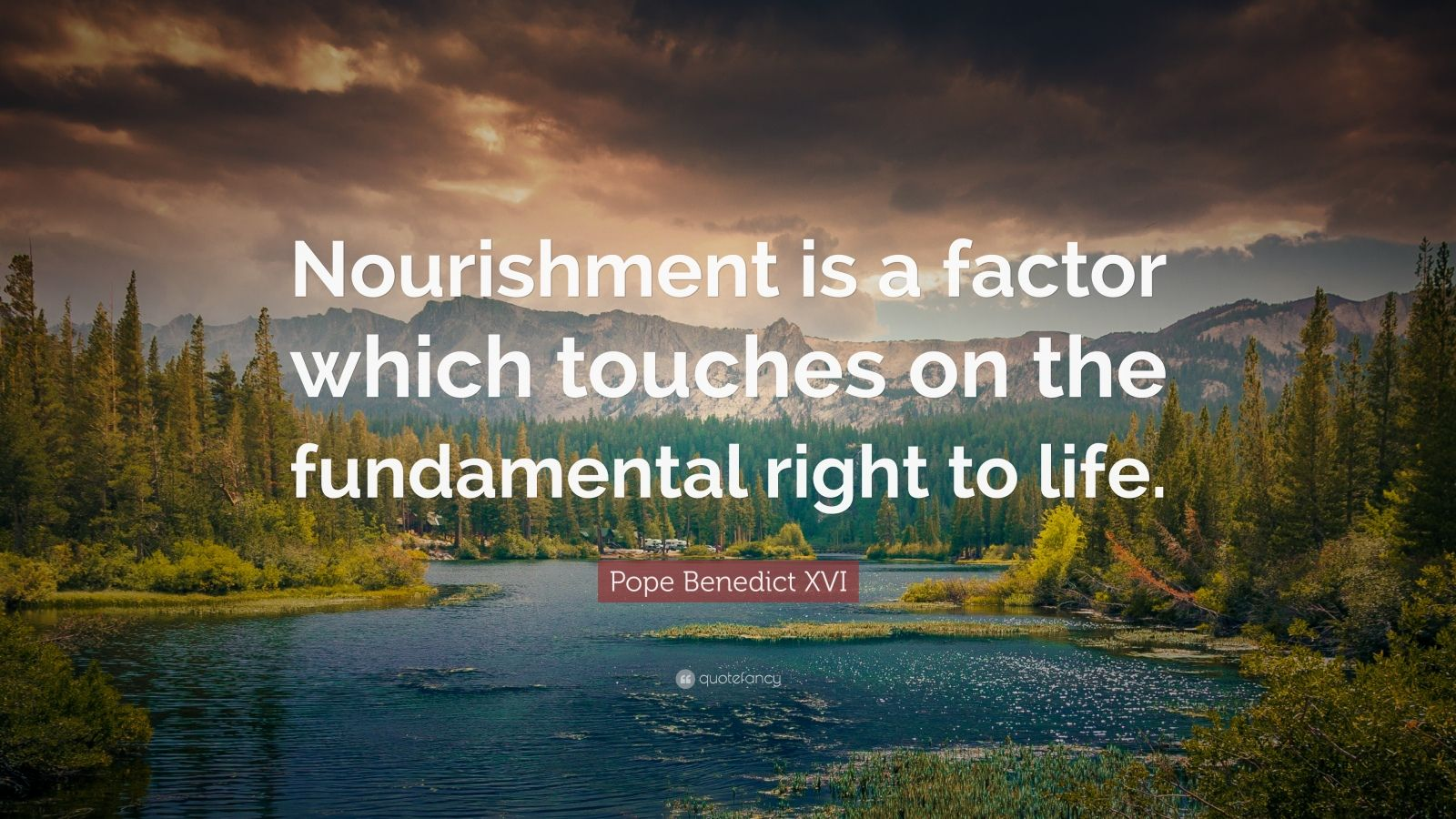 "Pope Benedict XVI Quote: ""Nourishment is a factor which touches on the fundamental right to life."""