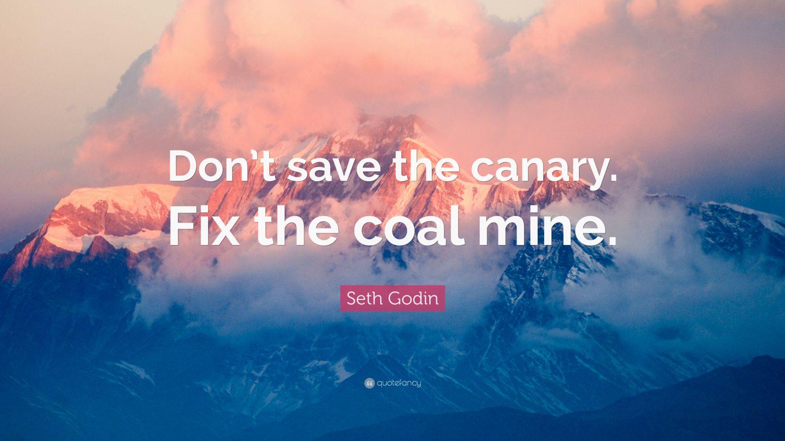 "Seth Godin Quote: ""Don't save the canary. Fix the coal mine."""