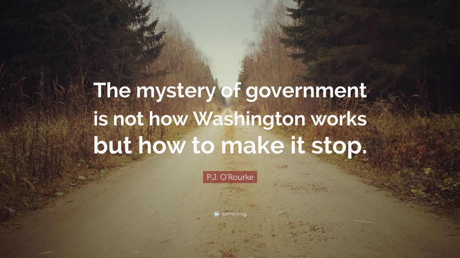 "P.J. O'Rourke Quote: ""The mystery of government is not how Washington works but how to make it stop."""