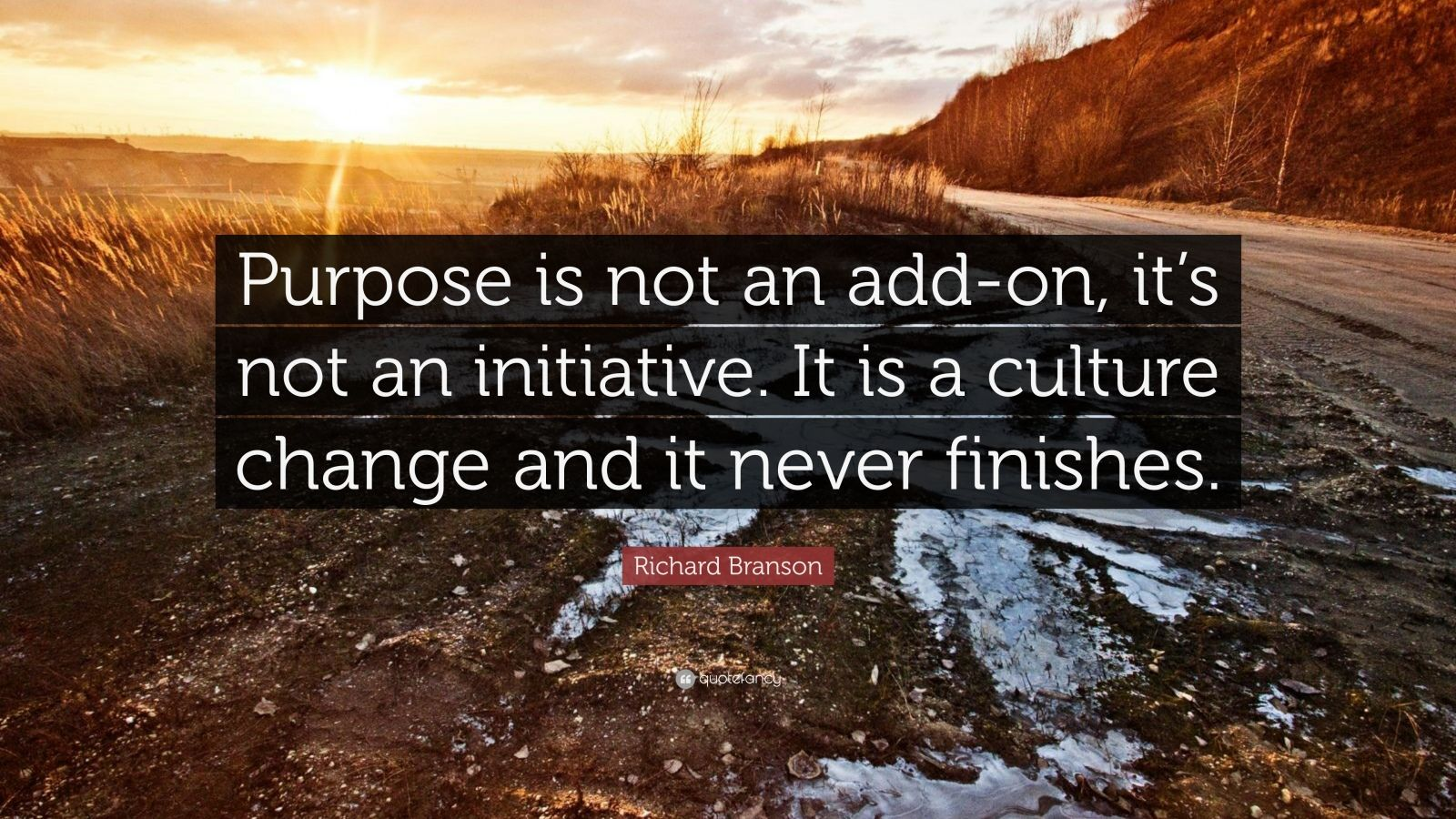 "Richard Branson Quote: ""Purpose is not an add-on, it's not an initiative. It is a culture change and it never finishes."""