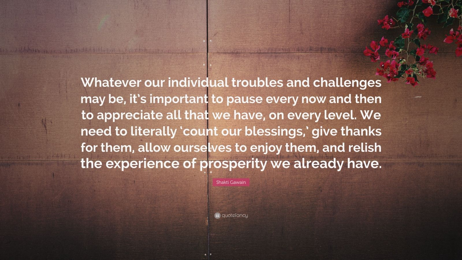 """Shakti Gawain Quote: """"Whatever our individual troubles and challenges may be, it's important to pause every now and then to appreciate all that we have, on every level. We need to literally 'count our blessings,' give thanks for them, allow ourselves to enjoy them, and relish the experience of prosperity we already have."""""""