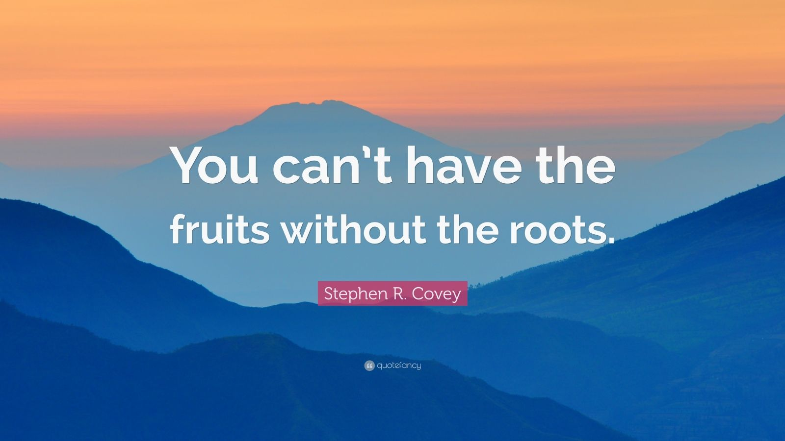 "Stephen R. Covey Quote: ""You can't have the fruits without the roots."""