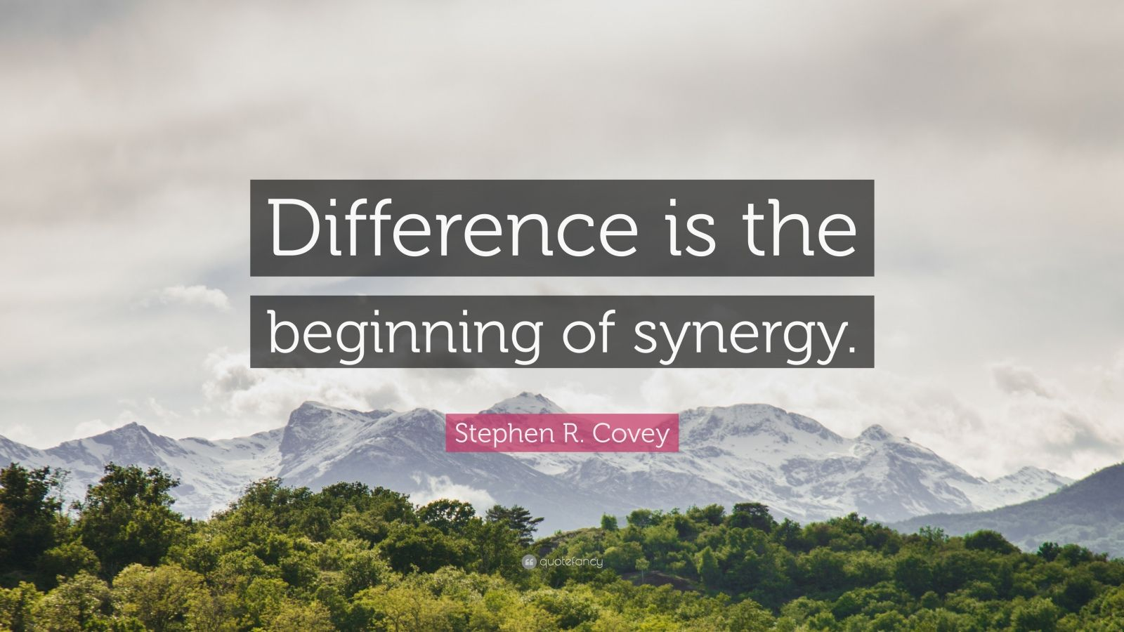 "Stephen R. Covey Quote: ""Difference is the beginning of synergy."""