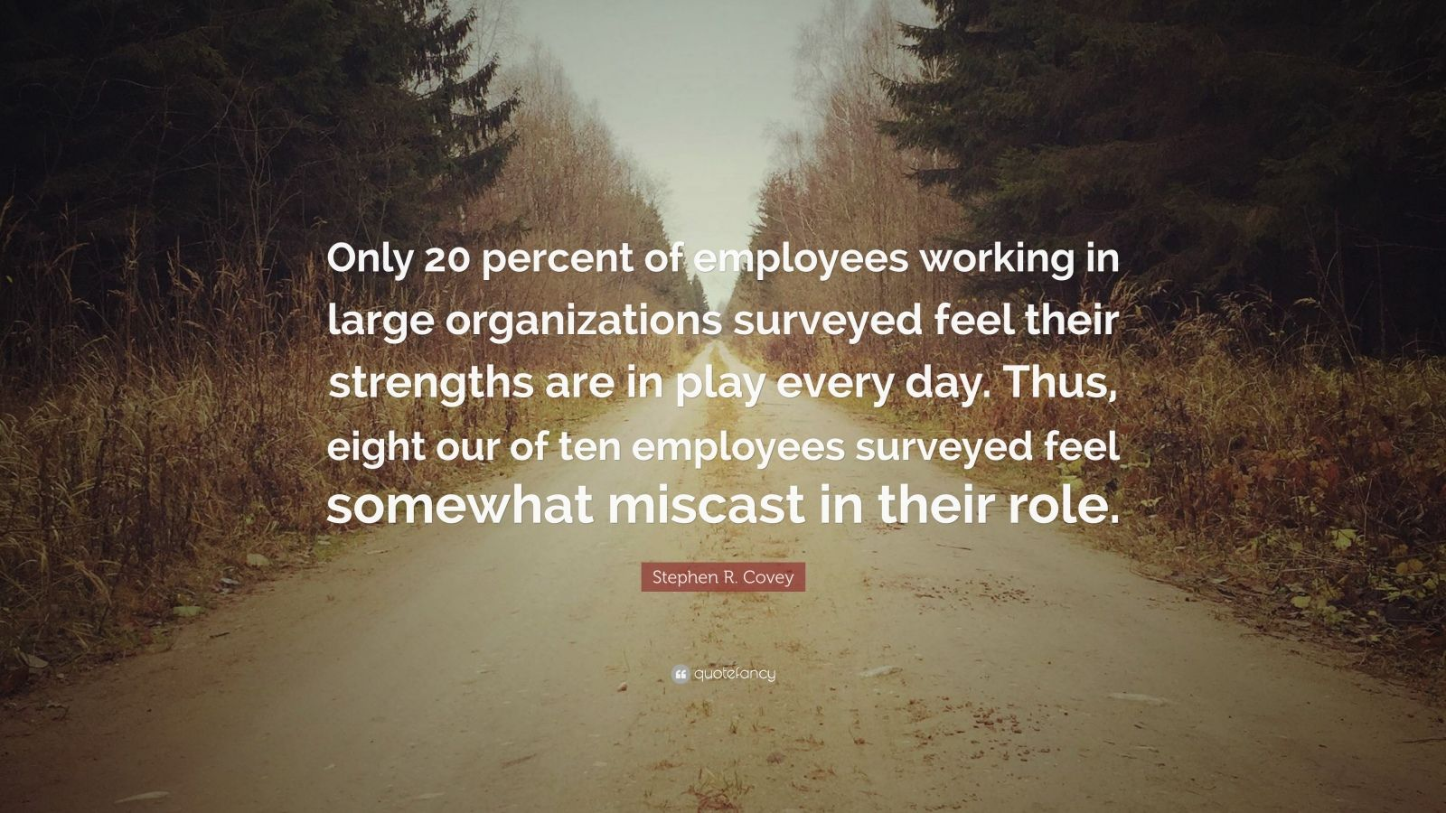 "Stephen R. Covey Quote: ""Only 20 percent of employees working in large organizations surveyed feel their strengths are in play every day. Thus, eight our of ten employees surveyed feel somewhat miscast in their role."""