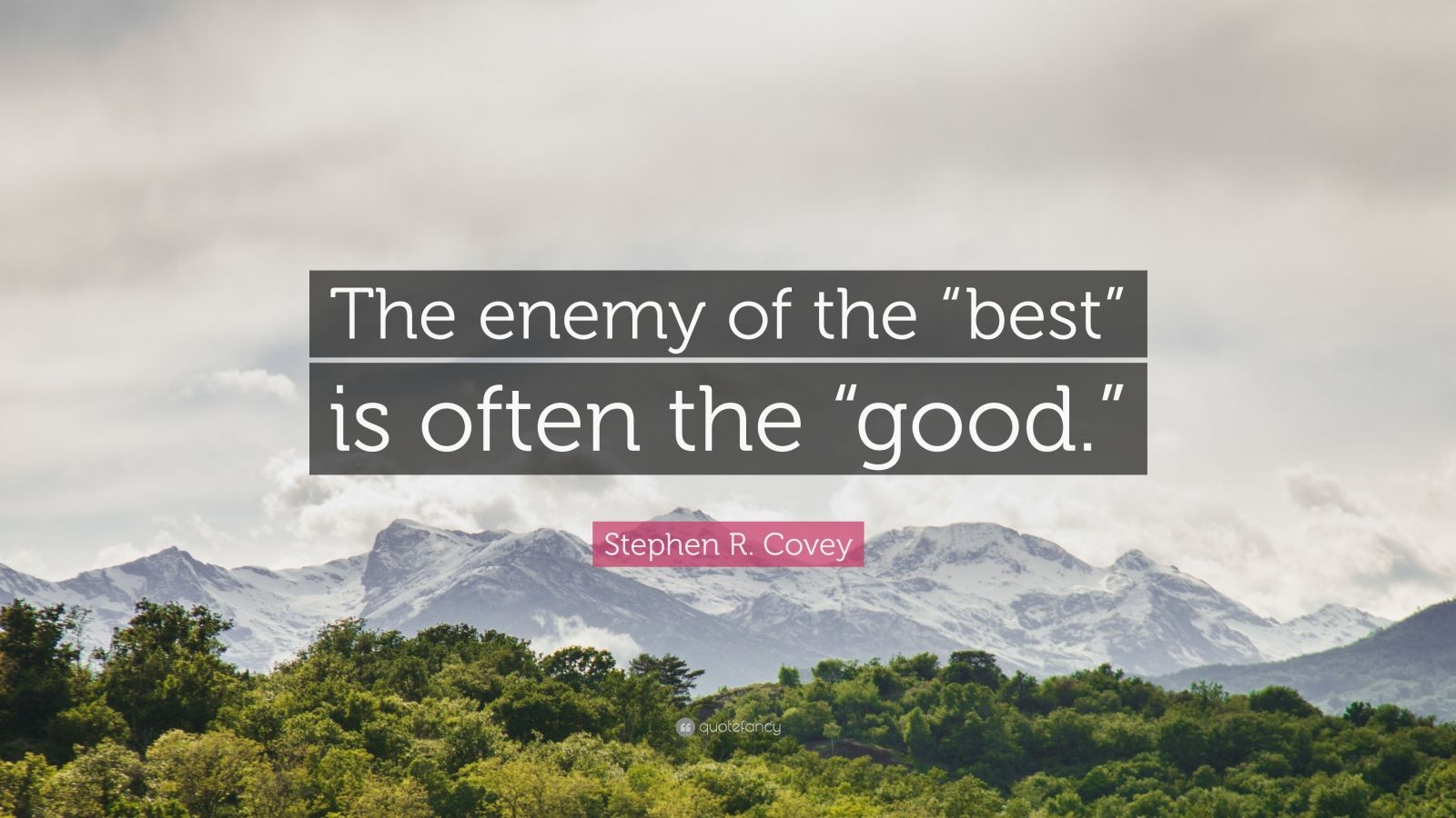 "Stephen R. Covey Quote: ""The enemy of the ""best"" is often the ""good."""""
