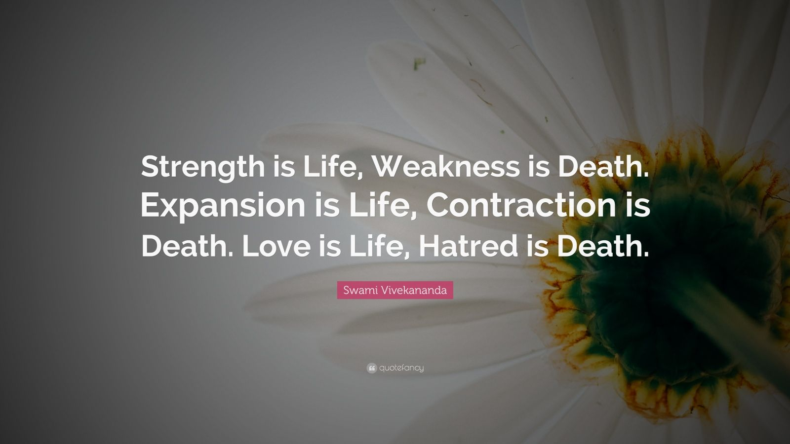 "Swami Vivekananda Quote: ""Strength is Life, Weakness is Death. Expansion is Life, Contraction is Death. Love is Life, Hatred is Death."""