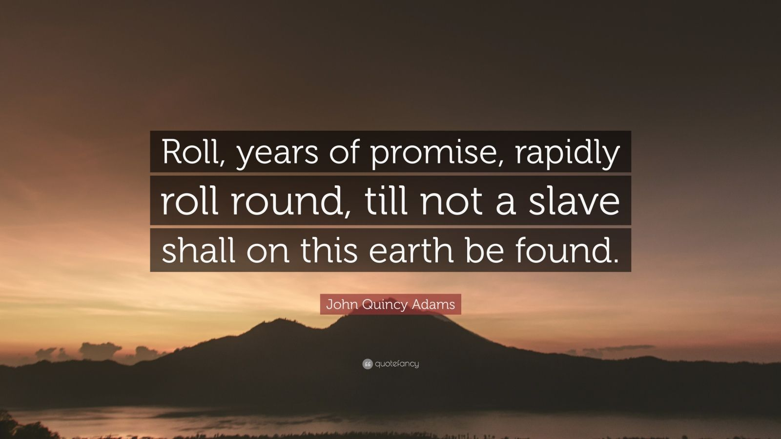 """John Quincy Adams Quote: """"Roll, years of promise, rapidly roll round, till not a slave shall on this earth be found."""""""