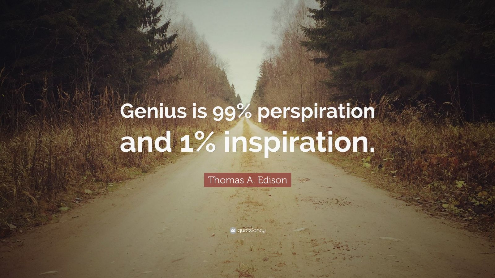 "Thomas A. Edison Quote: ""Genius is 99% perspiration and 1% inspiration."""