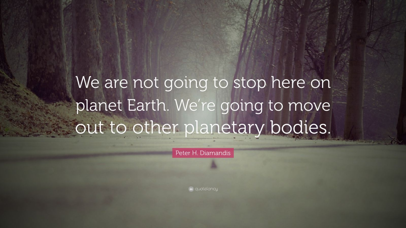 """Peter H. Diamandis Quote: """"We are not going to stop here on planet Earth. We're going to move out to other planetary bodies."""""""