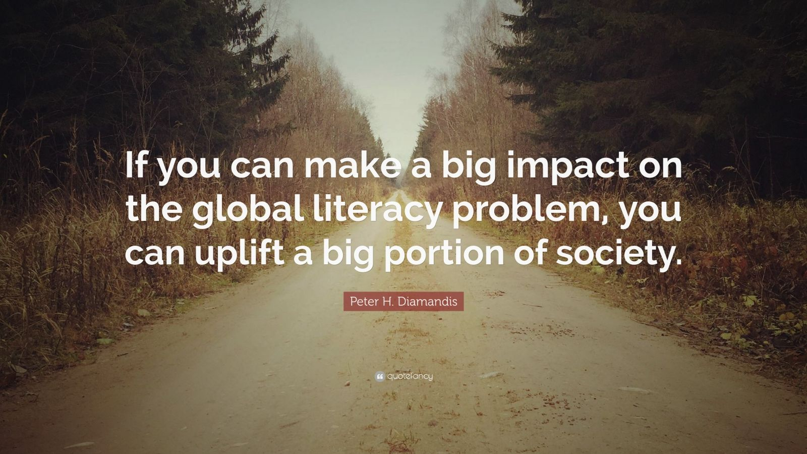 """Peter H. Diamandis Quote: """"If you can make a big impact on the global literacy problem, you can uplift a big portion of society."""""""
