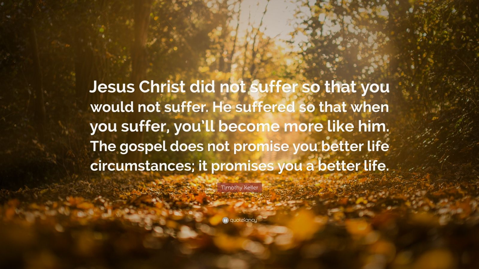 """Timothy Keller Quote: """"Jesus Christ did not suffer so that you would not suffer. He suffered so that when you suffer, you'll become more like him. The gospel does not promise you better life circumstances; it promises you a better life."""""""