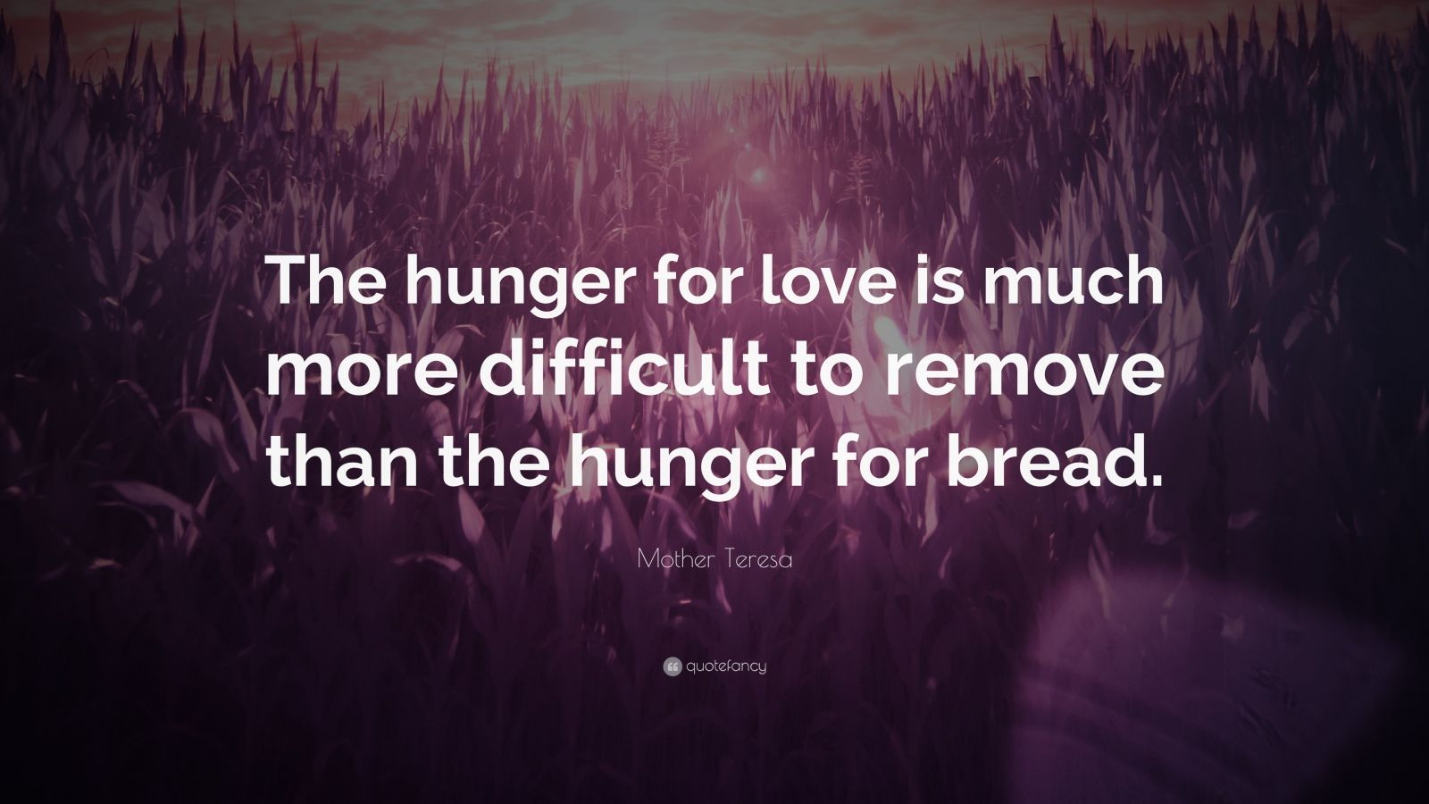 Quotes About Hunger The Hunger For Love Quote  Inspiring Quotes And Words In Life