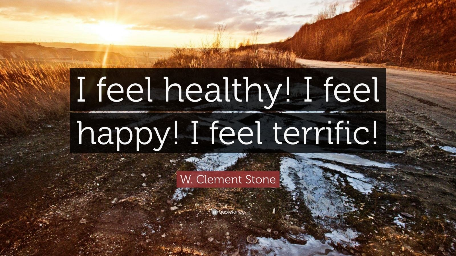 "W. Clement Stone Quote: ""I feel healthy! I feel happy! I feel terrific!"""