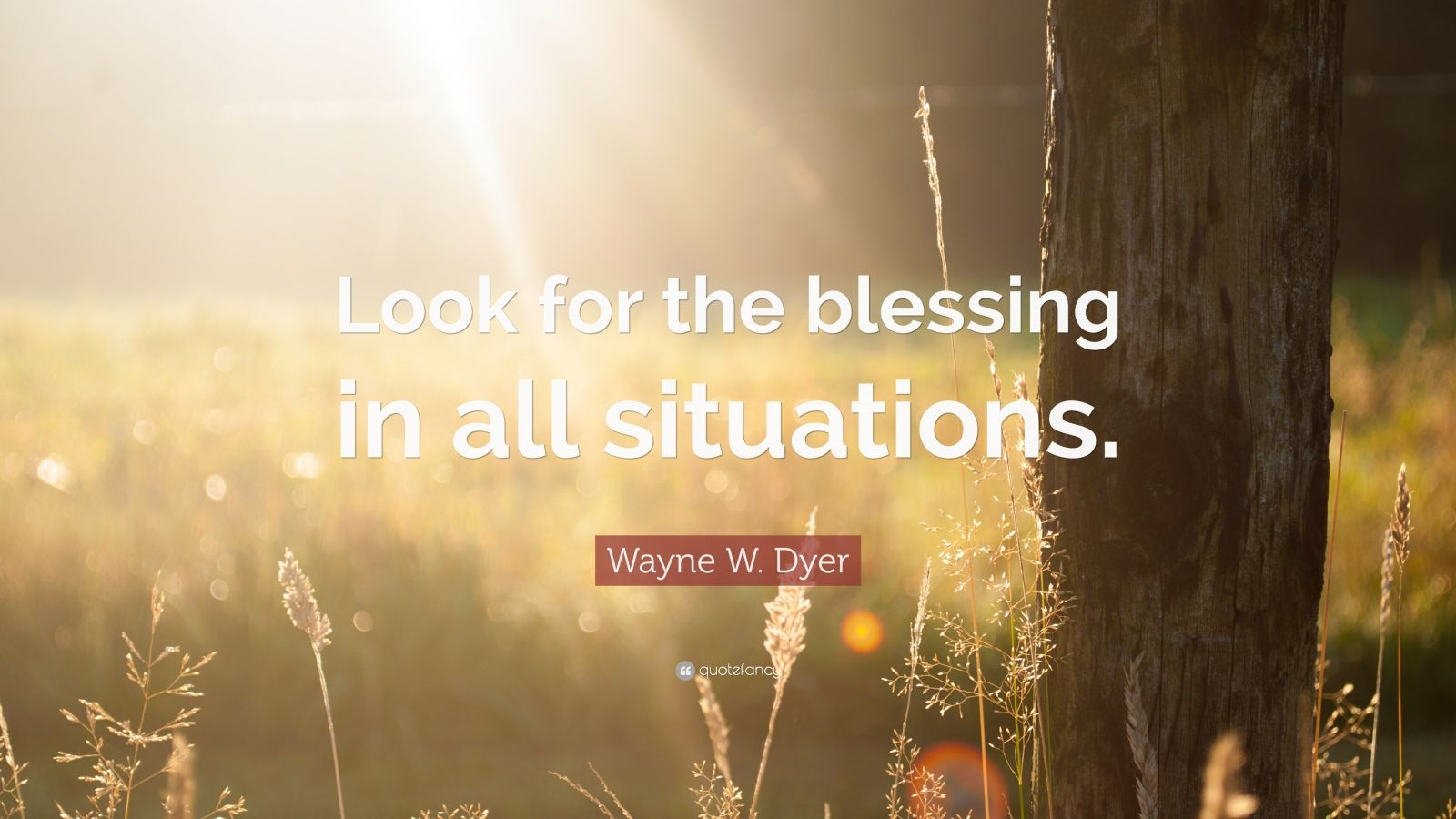 "Wayne W. Dyer Quote: ""Look for the blessing in all situations."""