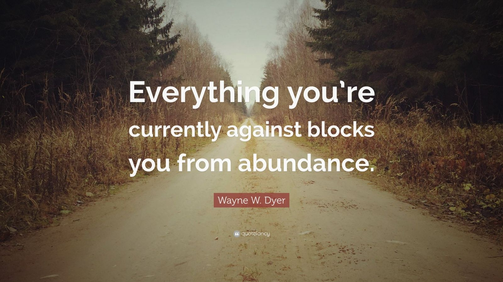 """Wayne W. Dyer Quote: """"Everything you're currently against blocks you from abundance."""""""