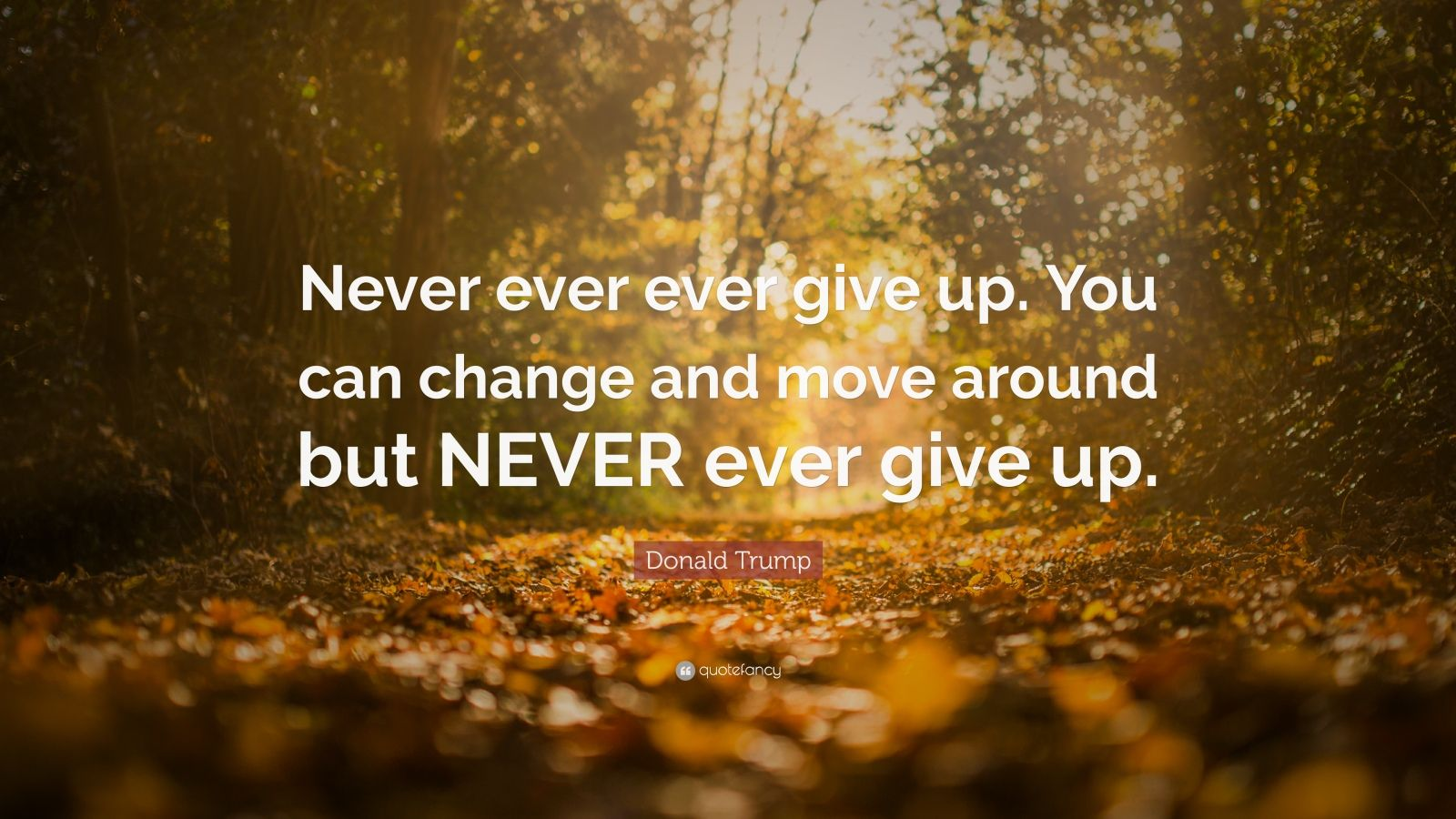 """Donald Trump Quote: """"Never ever ever give up. You can change and move around but NEVER ever give up."""""""