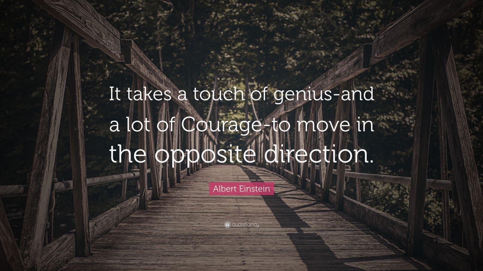 """Albert Einstein Quote: """"It takes a touch of genius-and a lot of Courage-to move in the opposite direction."""""""