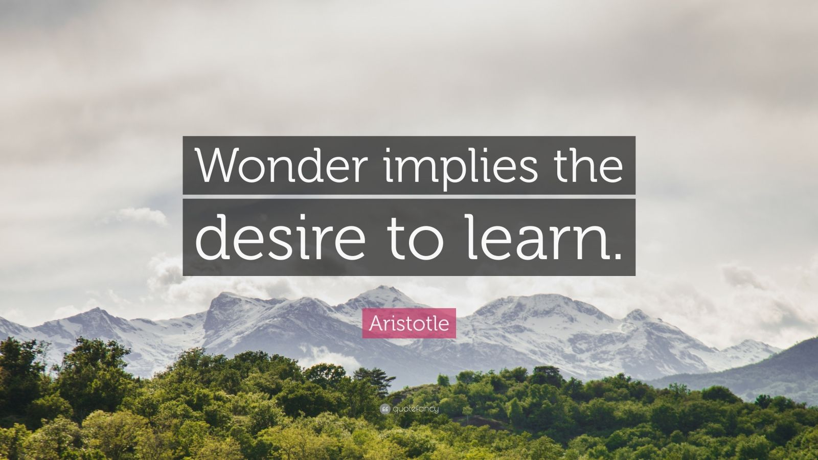 """Aristotle Quote: """"Wonder implies the desire to learn."""""""