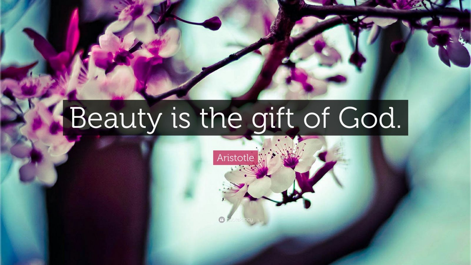"Aristotle Quote: ""Beauty is the gift of God."""