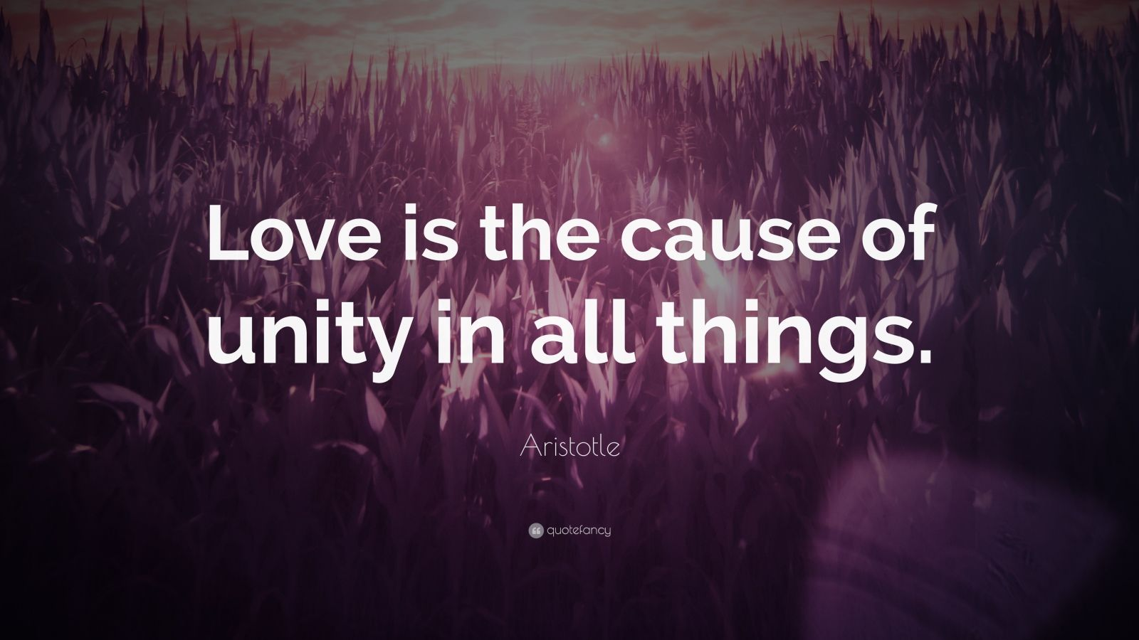 """Aristotle Quote: """"Love is the cause of unity in all things."""""""
