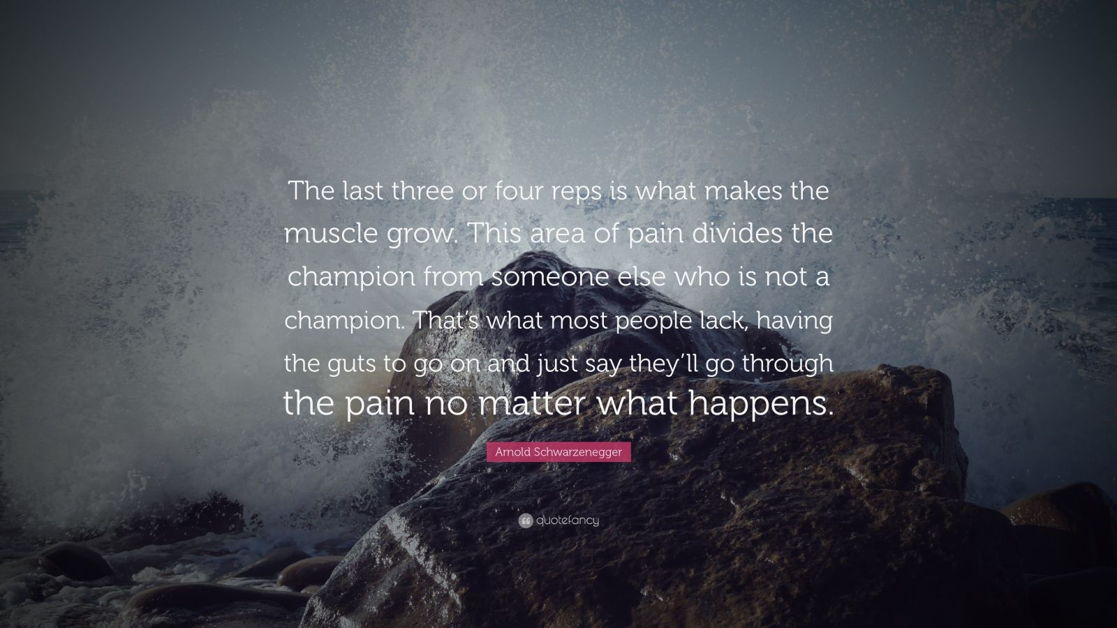 """Arnold Schwarzenegger Quote: """"The last three or four reps is what makes the muscle grow. This area of pain divides the champion from someone else who is not a champion. That's what most people lack, having the guts to go on and just say they'll go through the pain no matter what happens."""""""
