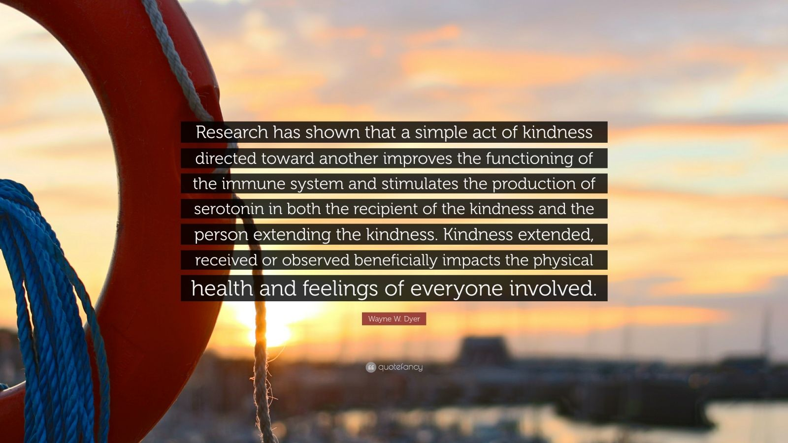 """Wayne W. Dyer Quote: """"Research has shown that a simple act of kindness directed toward another improves the functioning of the immune system and stimulates the production of serotonin in both the recipient of the kindness and the person extending the kindness. Kindness extended, received or observed beneficially impacts the physical health and feelings of everyone involved."""""""
