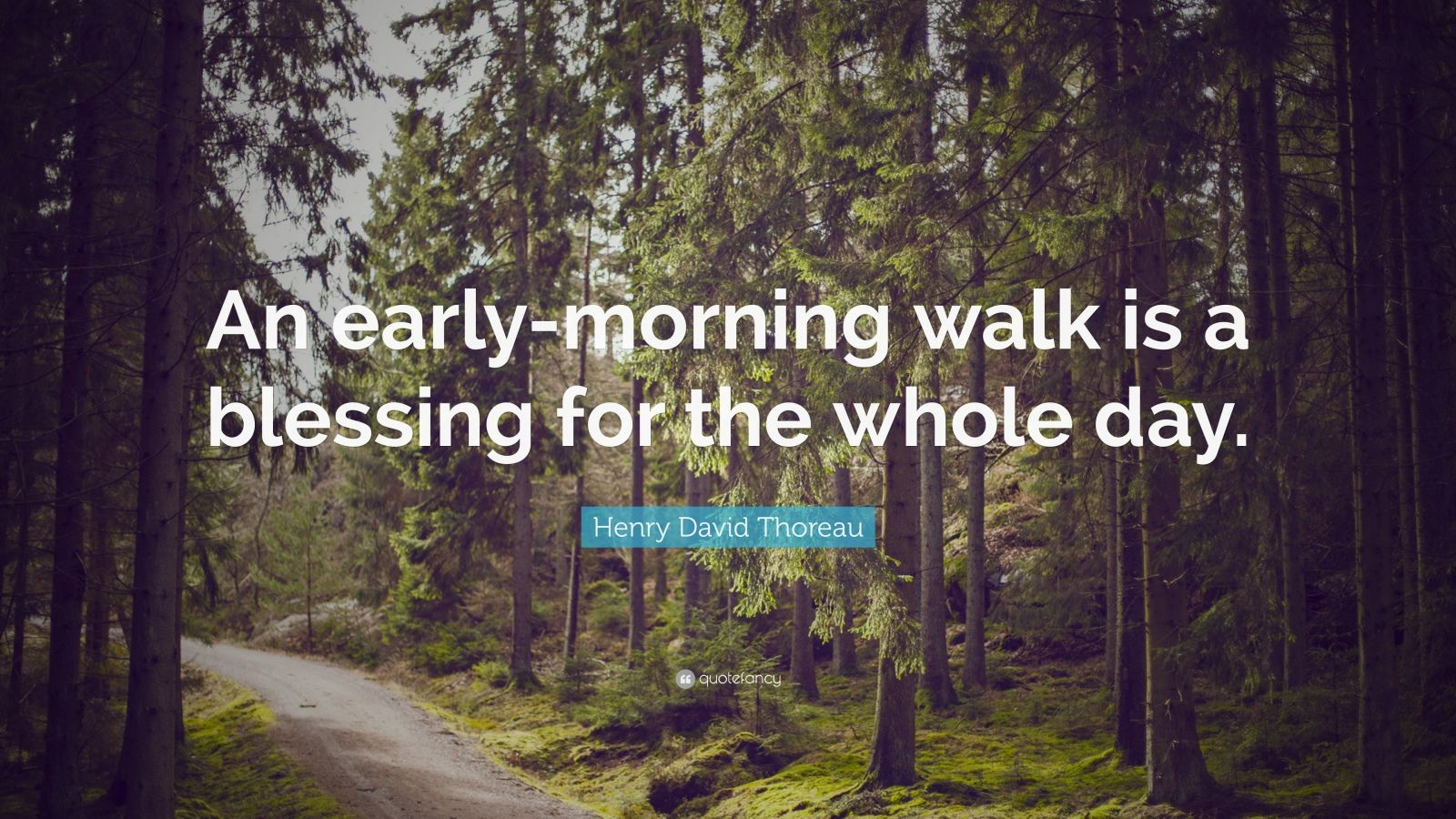 "Henry David Thoreau Quote: ""An early-morning walk is a blessing for the whole day."""