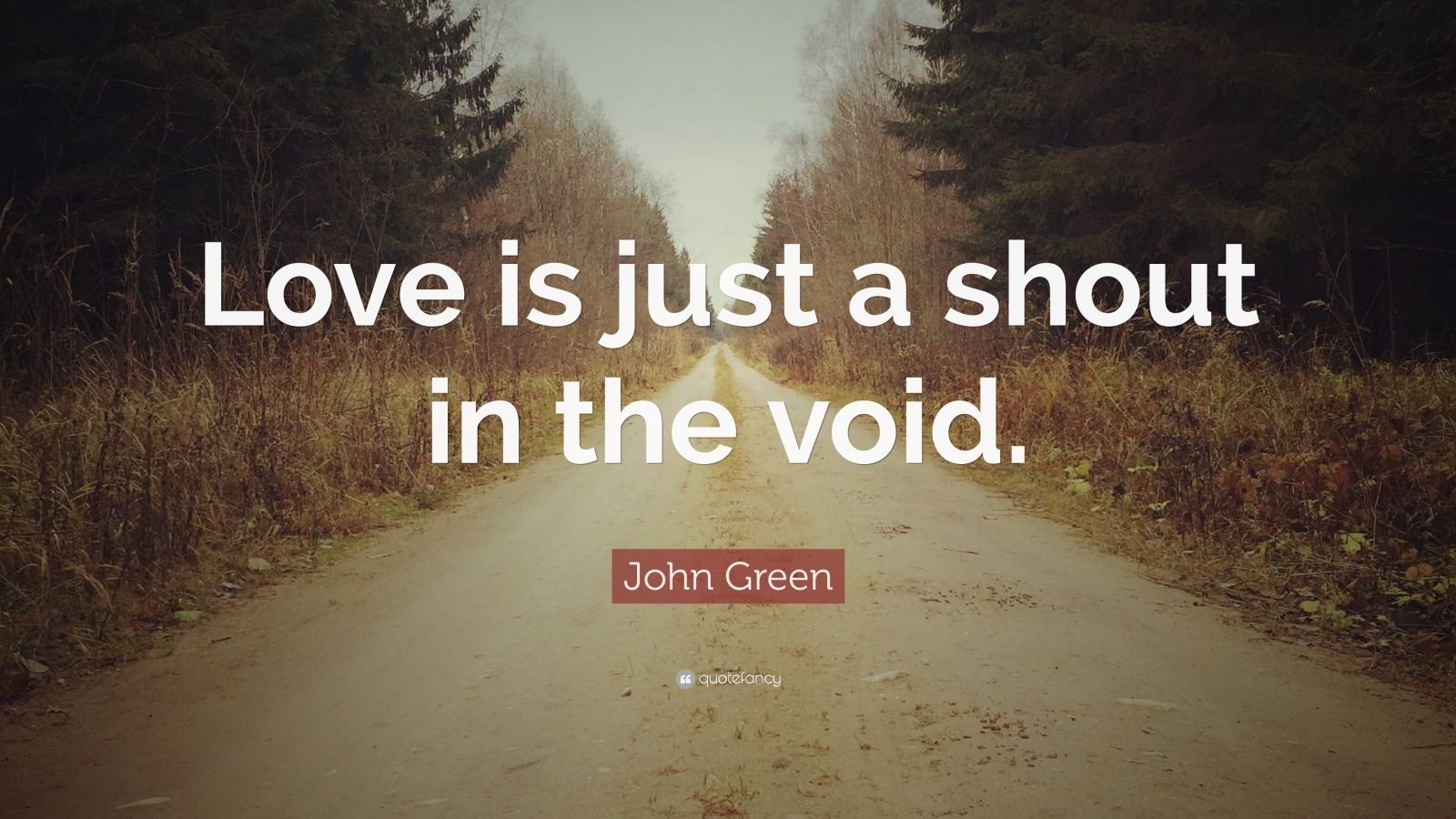 "John Green Quote: ""Love is just a shout in the void."""