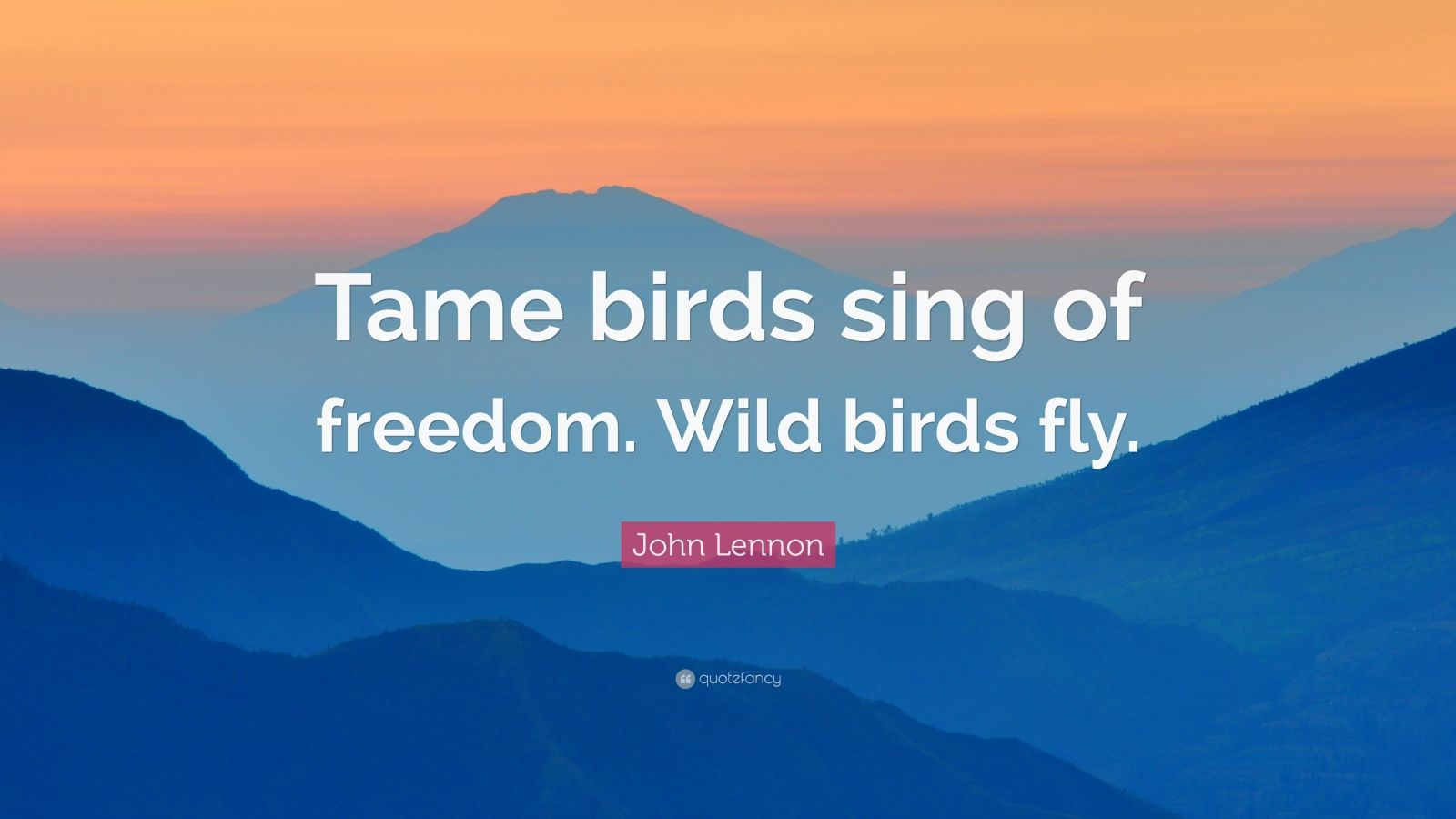 "John Lennon Quote: ""Tame birds sing of freedom. Wild birds fly."""