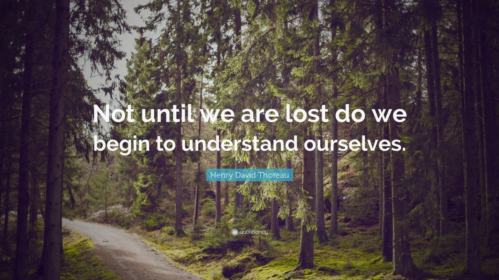 """Henry David Thoreau Quote: """"Not until we are lost do we begin to understand ourselves."""""""