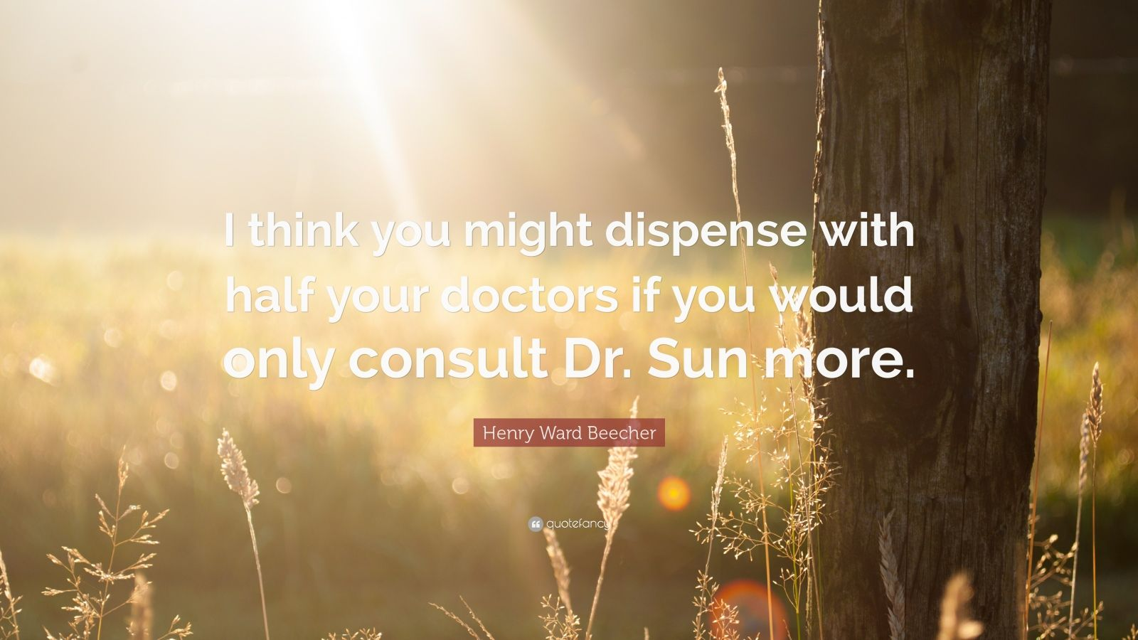 "Henry Ward Beecher Quote: ""I think you might dispense with half your doctors if you would only consult Dr. Sun more."""