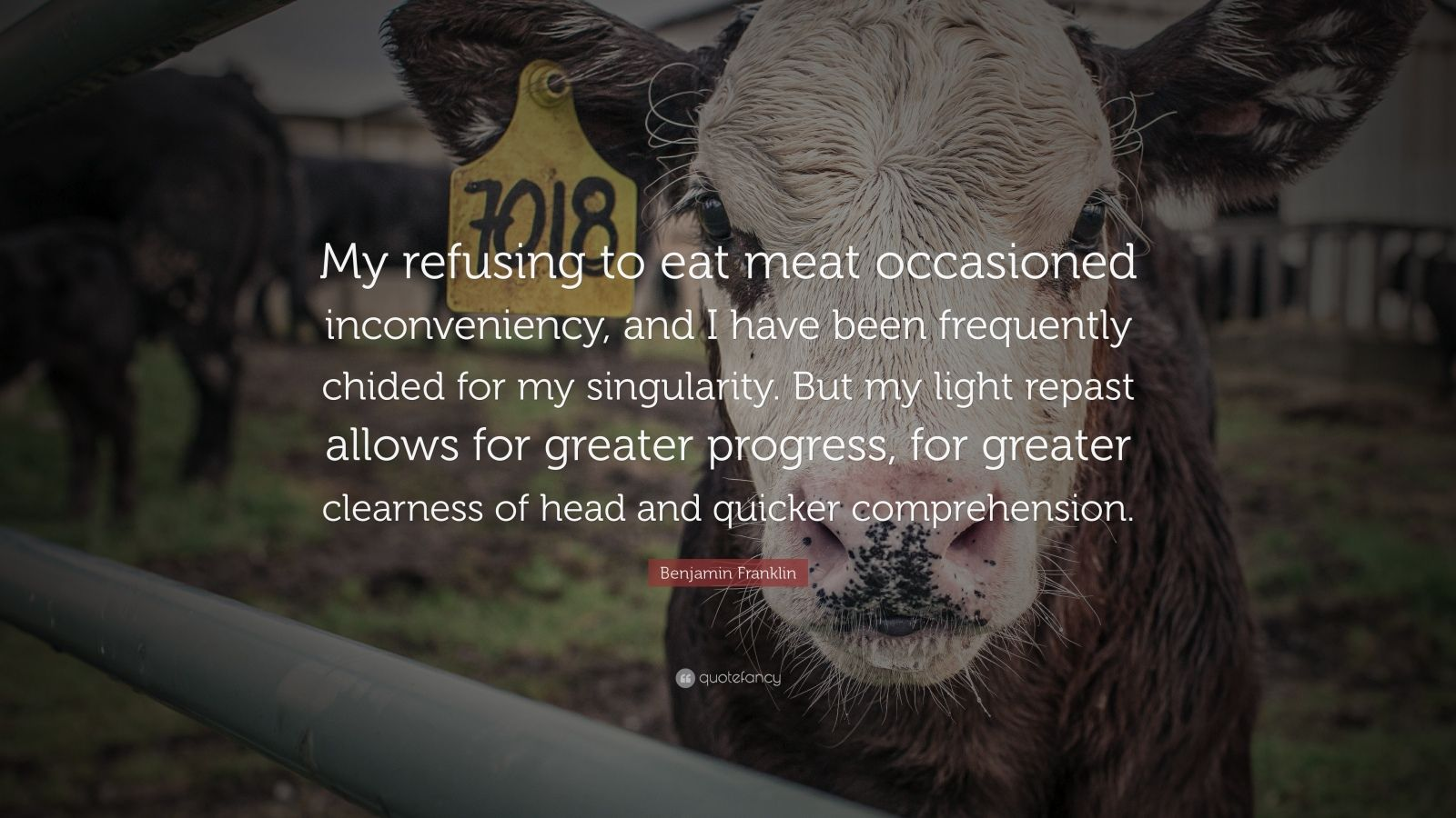"Benjamin Franklin Quote: ""My refusing to eat meat occasioned inconveniency, and I have been frequently chided for my singularity. But my light repast allows for greater progress, for greater clearness of head and quicker comprehension."""