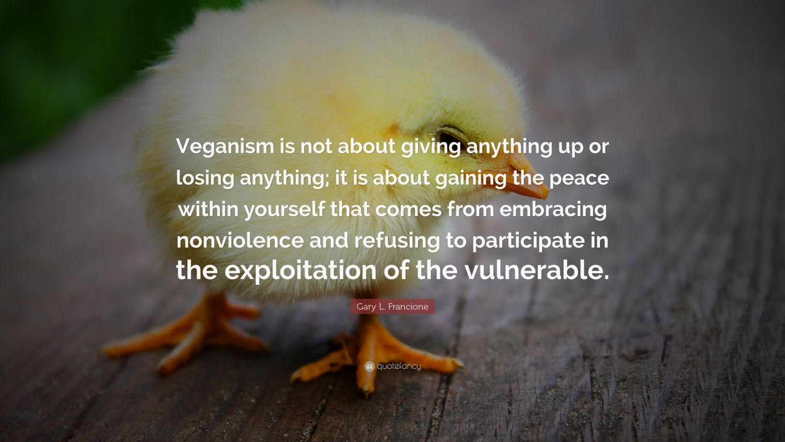"""Gary L. Francione Quote: """"Veganism is not about giving anything up or losing anything; it is about gaining the peace within yourself that comes from embracing nonviolence and refusing to participate in the exploitation of the vulnerable."""""""