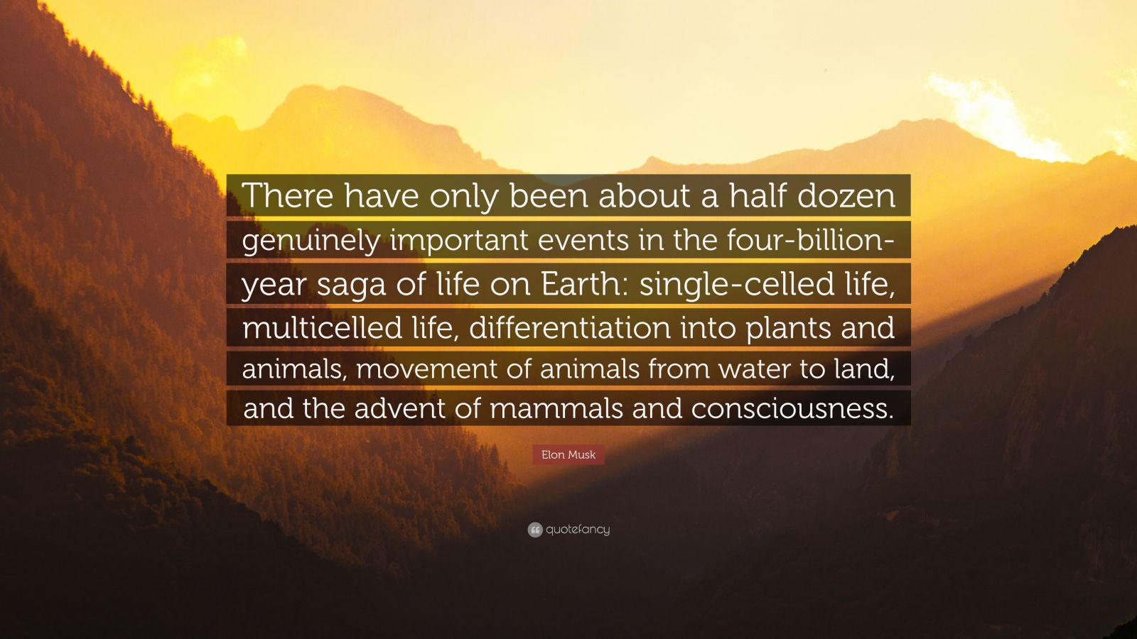 "Elon Musk Quote: ""There have only been about a half dozen genuinely important events in the four-billion-year saga of life on Earth: single-celled life, multicelled life, differentiation into plants and animals, movement of animals from water to land, and the advent of mammals and consciousness."""