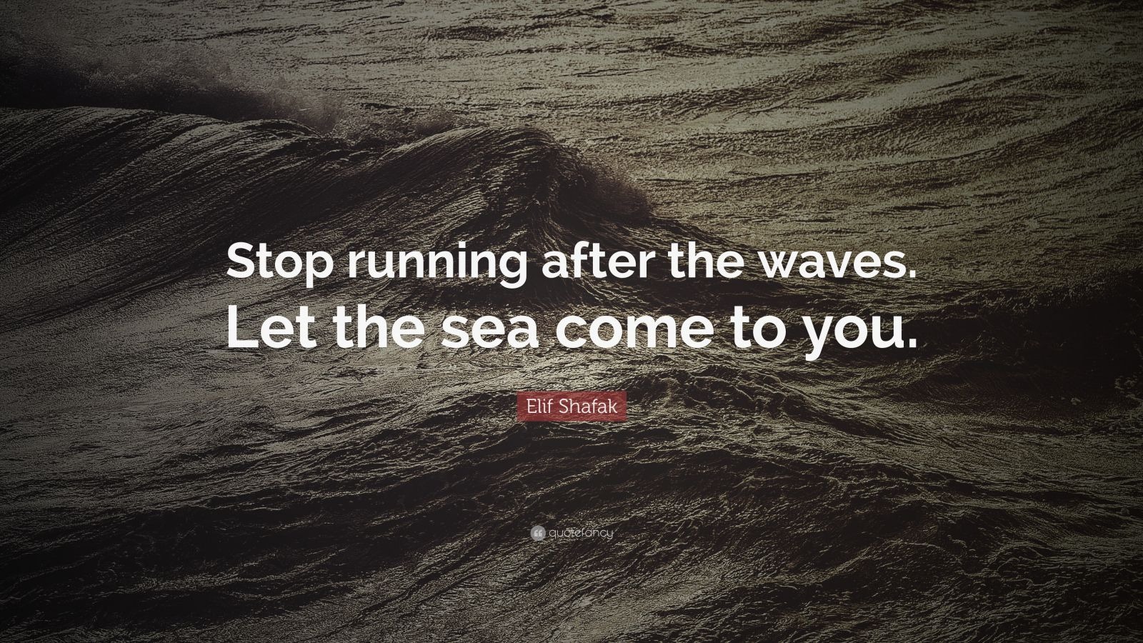 """Elif Shafak Quote: """"Stop running after the waves. Let the sea come to you."""""""