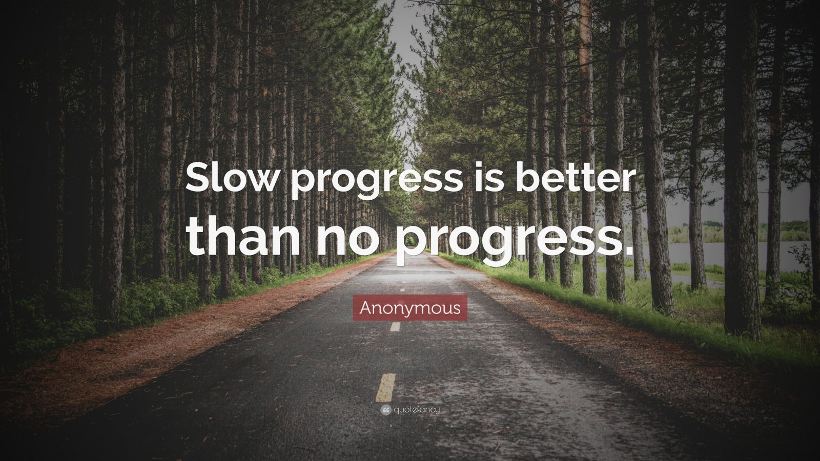 "Anonymous Quote: ""Slow progress is better than no progress."""