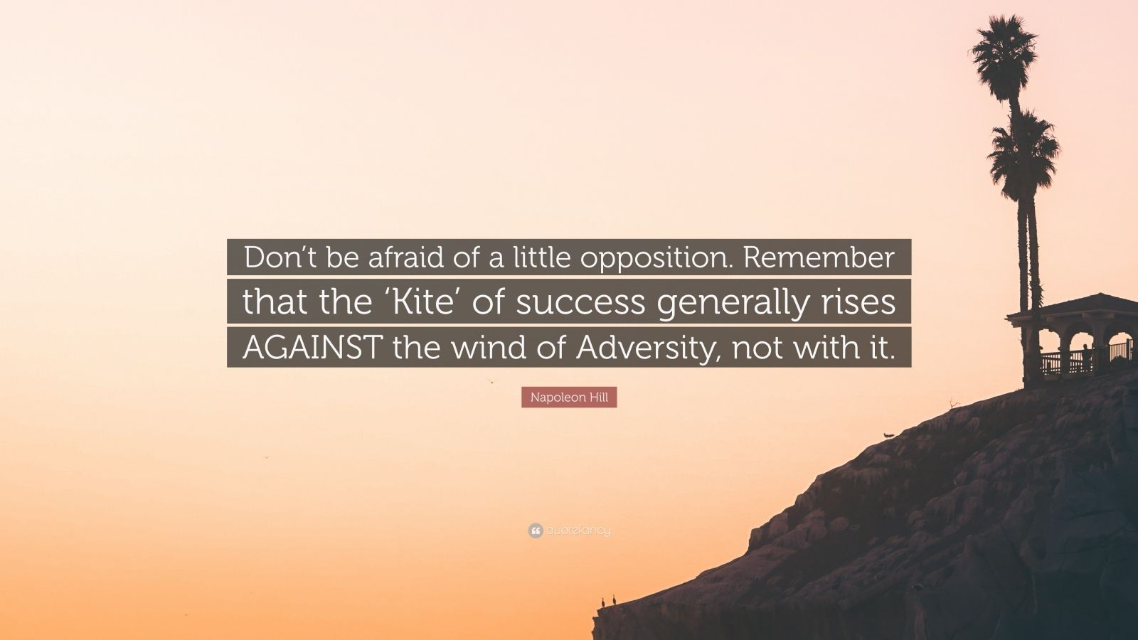 "Napoleon Hill Quote: ""Don't be afraid of a little opposition. Remember that the 'Kite' of success generally rises AGAINST the wind of Adversity, not with it."""