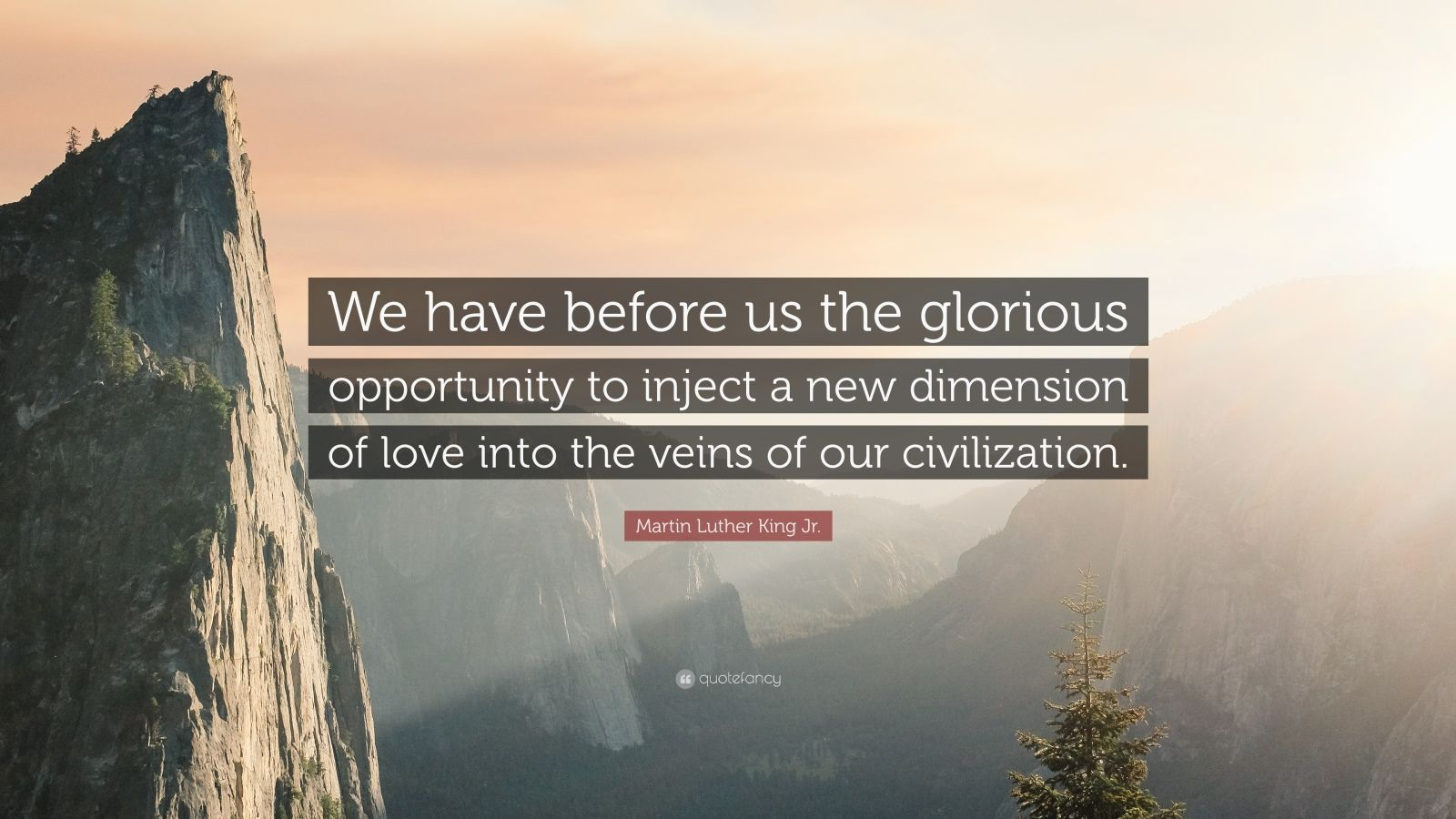 """Martin Luther King Jr. Quote: """"We have before us the glorious opportunity to inject a new dimension of love into the veins of our civilization."""""""