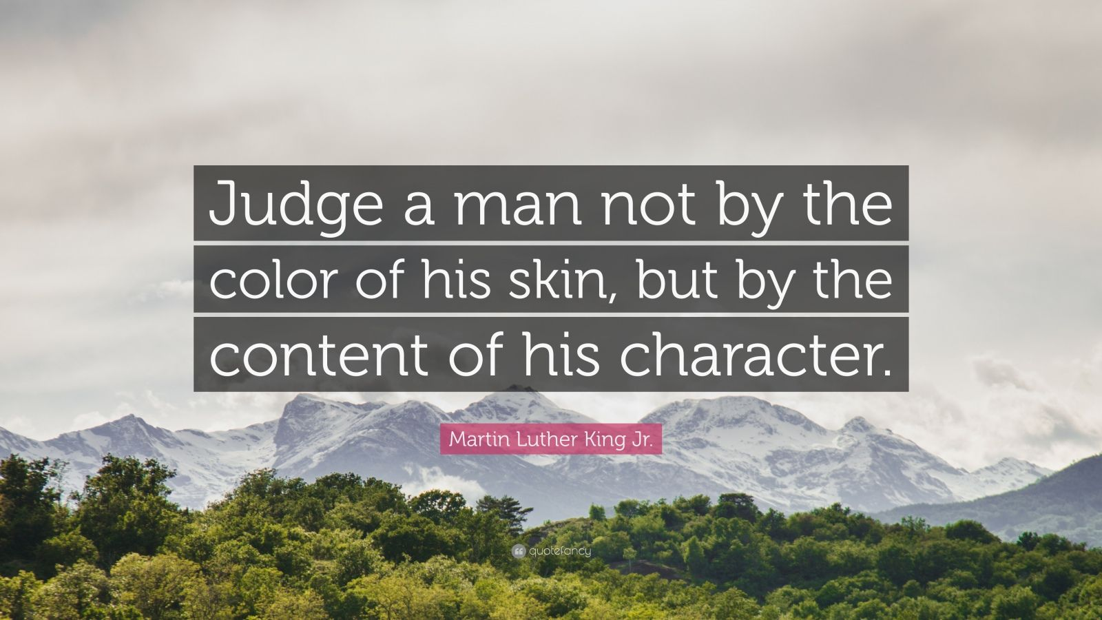 """Martin Luther King Jr. Quote: """"Judge a man not by the color of his skin, but by the content of his character."""""""