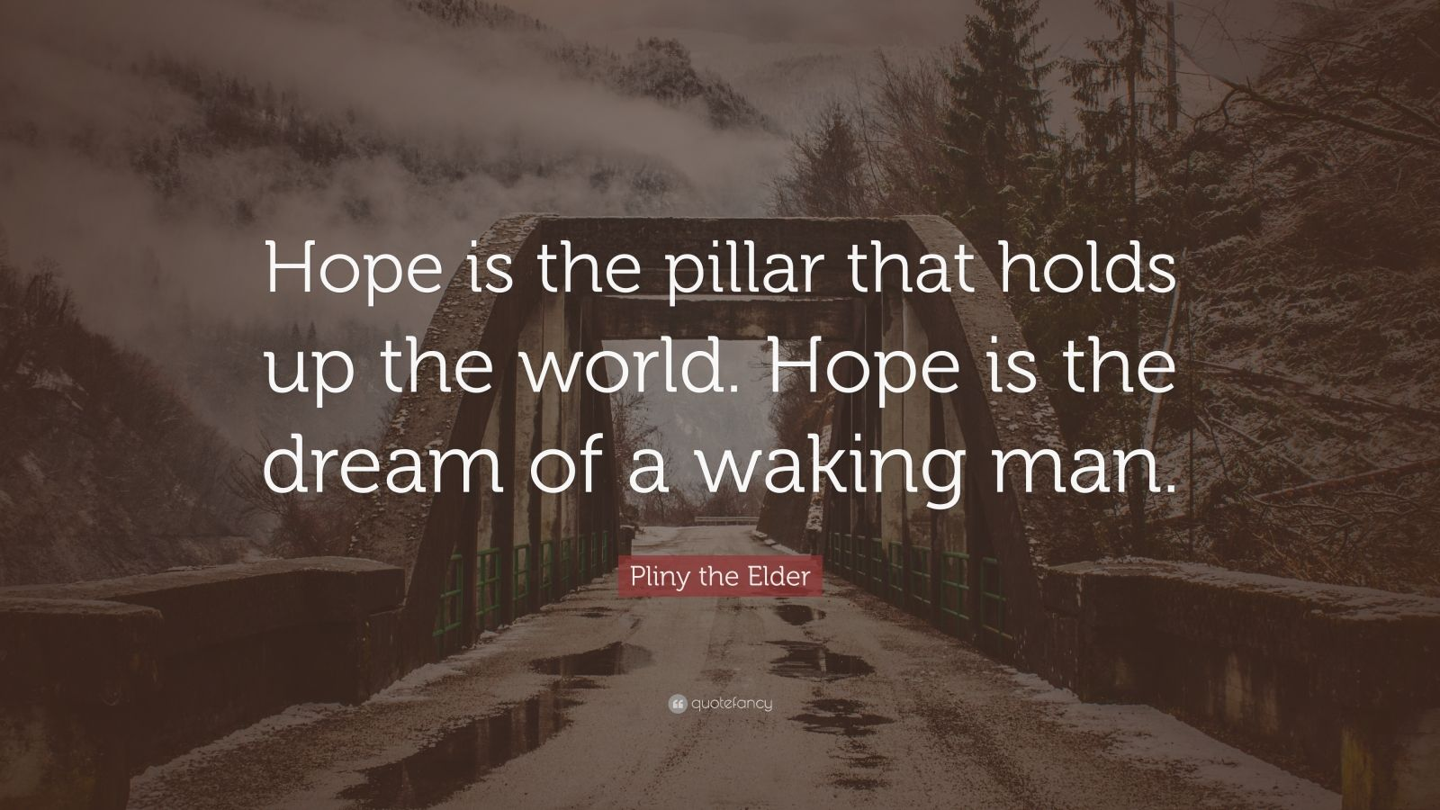 """Pliny The Elder Quotes: Pliny The Elder Quote: """"Hope Is The Pillar That Holds Up"""