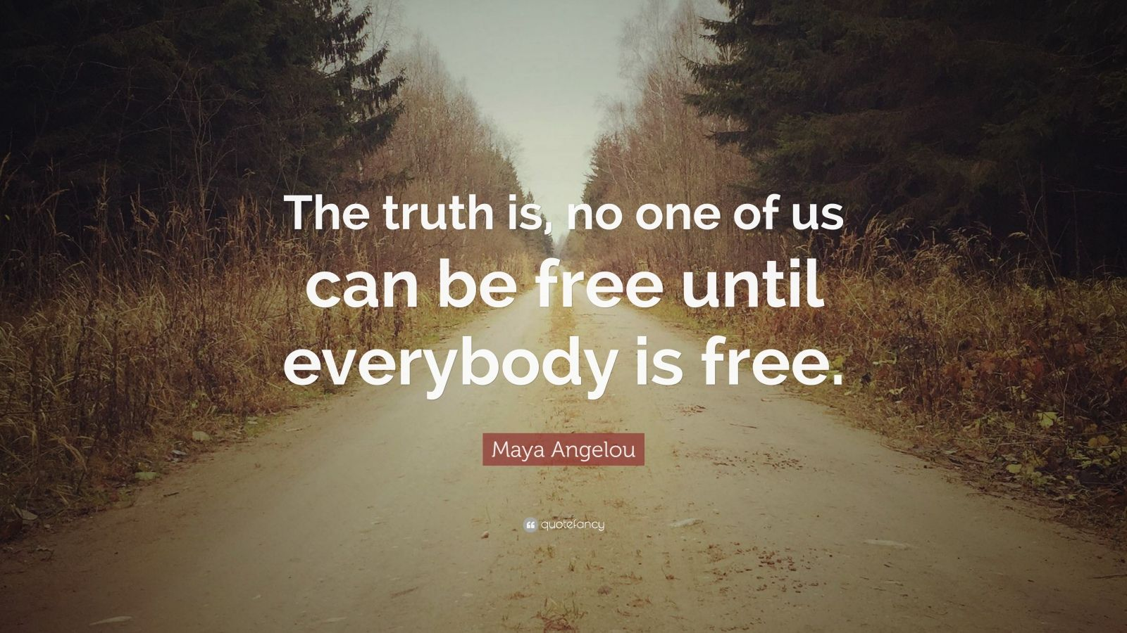 "Maya Angelou Quote: ""The truth is, no one of us can be free until everybody is free."""