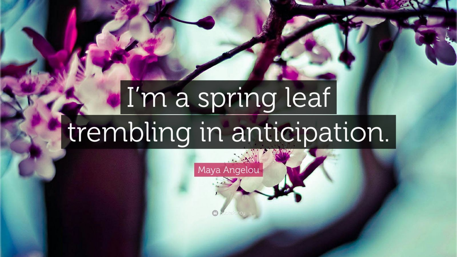 """Maya Angelou Quote: """"I'm a spring leaf trembling in anticipation."""""""