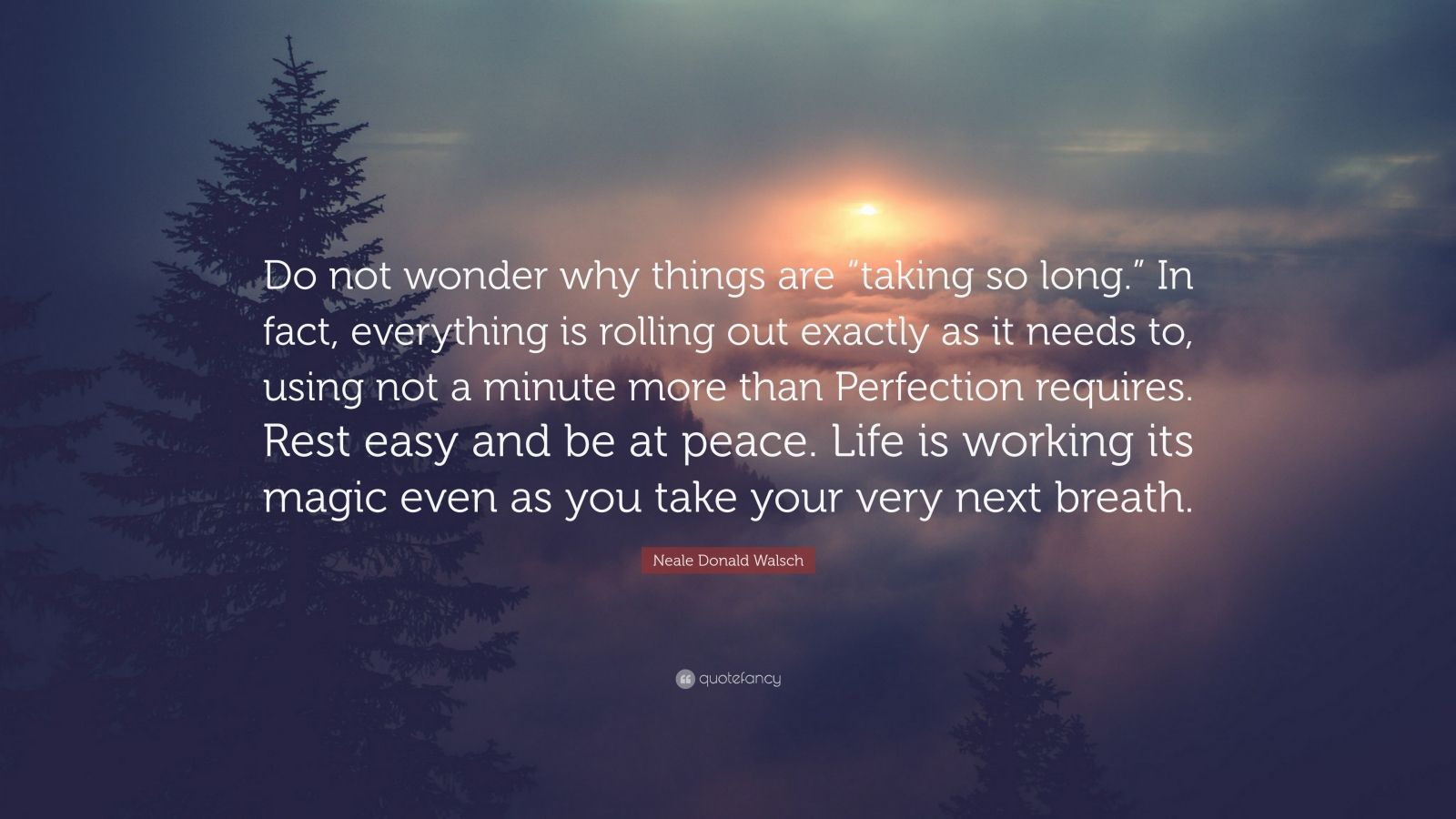 """Neale Donald Walsch Quote: """"Do not wonder why things are """"taking so long."""" In fact, everything is rolling out exactly as it needs to, using not a minute more than Perfection requires. Rest easy and be at peace. Life is working its magic even as you take your very next breath."""""""