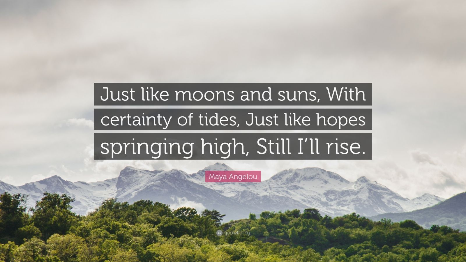 """Maya Angelou Quote: """"Just like moons and suns, With certainty of tides, Just like hopes springing high, Still I'll rise."""""""