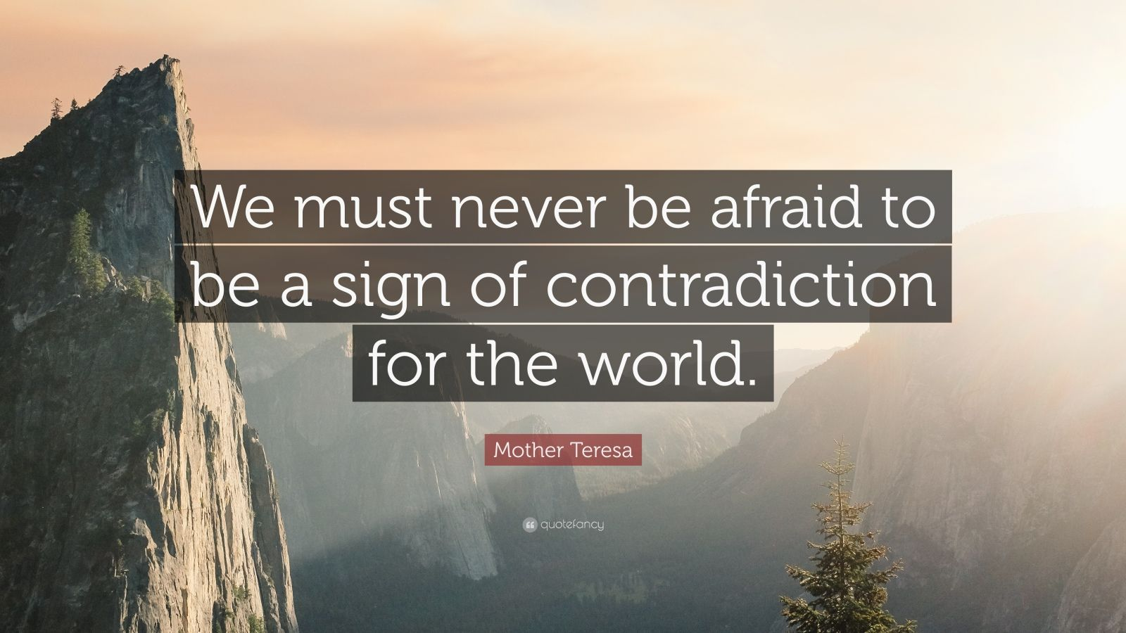 "Mother Teresa Quote: ""We must never be afraid to be a sign of contradiction for the world."""