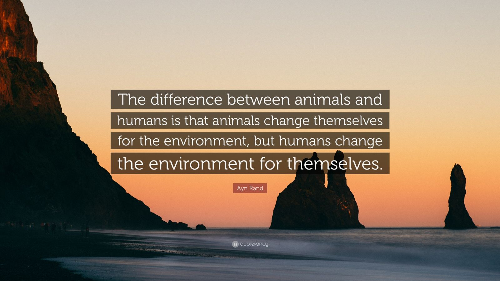humans and animals difference