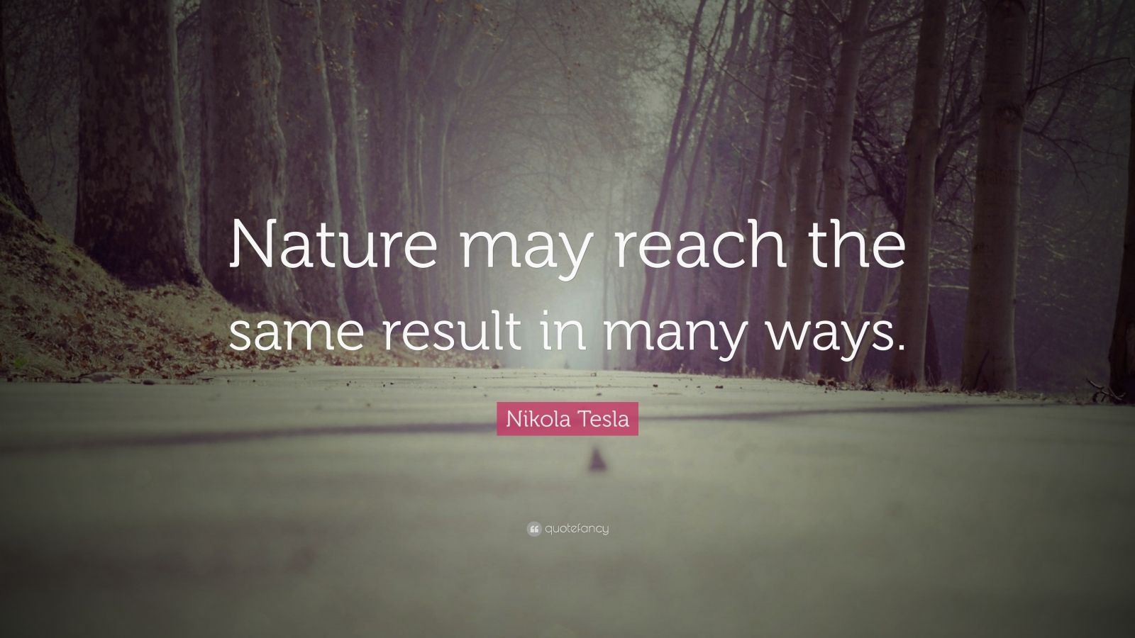 """Nikola Tesla Quote: """"Nature may reach the same result in many ways."""""""