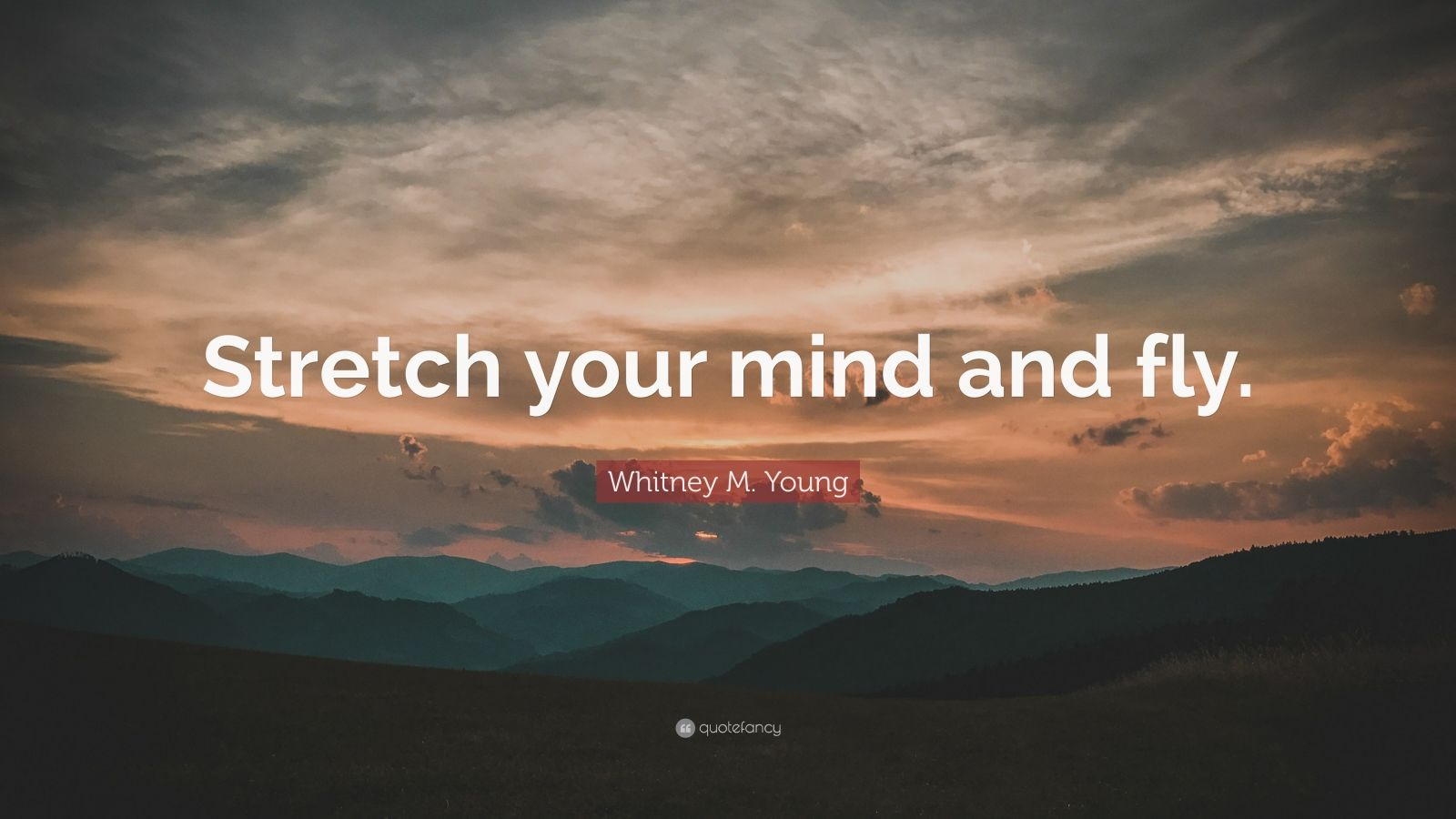 Whitney M Young Quotes 14 Wallpapers Quotefancy